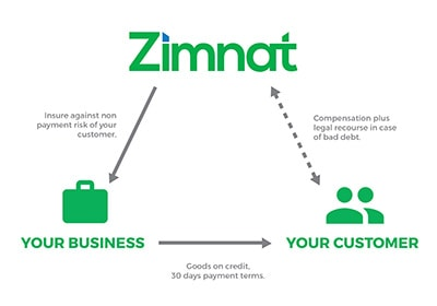 Zimnat Web Graphic 1